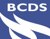 BCDS's Open Co-creation project wins grant